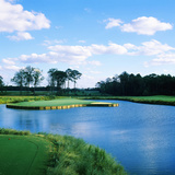 Pond in a Golf Course, Carolina Golf and Country Club, Charlotte, North Carolina, USA Photographic Print by Green Light Collection