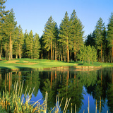 Reflection of Trees on Water, Edgewood Tahoe Golf Course, Stateline, Douglas County, Nevada, USA Photographic Print by Green Light Collection