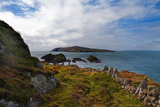 Cape Clear Island from Sherkin Island, County Cork, Ireland Photographic Print by Green Light Collection