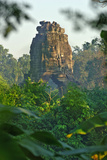 Angkor on Vegetation Photographic Print by Norbert Jung