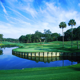 Tpc at Sawgrass, Ponte Vedre Beach, St. Johns County, Florida, USA Photographic Print by Green Light Collection