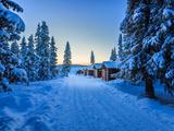 Empty Road Close to the Icehotel, Jukkasjarvi, Lapland Sweden Fotografisk tryk af Green Light Collection