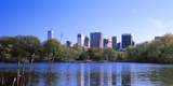 Turtles in the Lake, Central Park, Manhattan, New York City, New York State, USA Photographic Print by  Panoramic Images