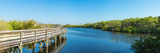 Anhinga Trail Boardwalk, Everglades National Park, Florida, USA Photographic Print by  Panoramic Images