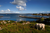 Maumeen Quay, Gorumna Island, Connemara, County Galway, Ireland Photographic Print by Green Light Collection