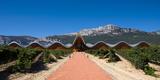 Bodegas Ysios Winery Building and Vineyard, La Rioja, Spain Lámina fotográfica por Panoramic Images,