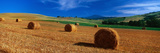 Hay Bales in a Field, Val D'Orcia, Siena Province, Tuscany, Italy Photographic Print by  Panoramic Images