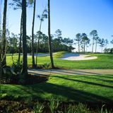 Sand Trap in a Golf Course, Regatta Bay Golf Course and Country Club, Destin, Okaloosa County Photographic Print by Green Light Collection