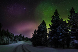 Aurora Borealis or Northern Lights, Lapland, Sweden Fotografisk tryk af Green Light Collection