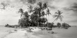 Palm Trees on the Beach, Morro De Sao Paulo, Tinhare, Cairu, Bahia, Brazil Photographic Print by  Panoramic Images