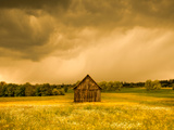 Barn in a Field of Wildflowers with Storm Clouds, Baden-Wurttemberg, Germany Photographic Print by Green Light Collection