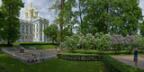 Formal Garden in Front of the Palace, Catherine Palace, Tsarskoye Selo, St. Petersburg, Russia Photographic Print by  Panoramic Images