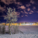 Snow Covered Trees and Frozen Pond, Reykjavik, Iceland Photographic Print by Green Light Collection