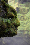 Moss Covered Rock Shaped Like a Face by Skogarfoss Waterfalls, Iceland Photographic Print by Green Light Collection