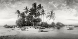 Panoramic Images - Palm Trees on the Beach, Morro De Sao Paulo, Tinhare, Cairu, Bahia, Brazil - Fotografik Baskı