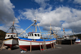 The Harbour and Fishing Boats, Passage East, County Waterford, Ireland Photographic Print by Green Light Collection
