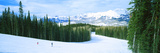 Tourists Skiing on a Snow Covered Landscape, Telluride, San Miguel County, Colorado, USA Photographic Print by  Panoramic Images