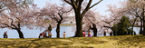 Tourists in a Park with a Memorial in the Background, Jefferson Memorial, Washington Dc, USA Photographic Print by  Panoramic Images