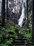 Burgbach Waterfall, Bad Rippoldsau-Schapbach, Black Forest, Baden-Wurttemberg, Germany Photographic Print by Green Light Collection