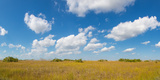 Clouds over Everglades National Park, Florida, USA Photographic Print by  Panoramic Images