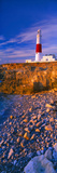 Lighthouse on the Coast, Portland Bill Lighthouse, Portland Bill, Dorset, England Photographic Print by  Panoramic Images