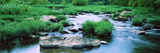 Flowing River, St. Francis River, Missouri, USA Photographic Print by  Panoramic Images