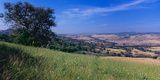Landscape, Tuscany, Italy Photographic Print by  Panoramic Images