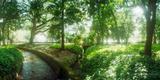 Trees in a Botanical Garden, Jardim Botanico, Zona Sul, Rio De Janeiro, Brazil Photographic Print by  Panoramic Images