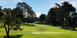 Trees in a Golf Course, Presidio Golf Course, San Francisco, California, USA Photographic Print by  Panoramic Images