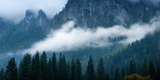 Fog Bank in Yosemite Valley, Yosemite National Park, California, USA Photographic Print by  Panoramic Images