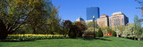 Garden with Skyscrapers in the Background, Boston Public Garden, Boston, Massachusetts, USA Photographic Print by  Panoramic Images