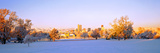 Winter in Downtown Denver, Colorado, USA Photographic Print by  Panoramic Images