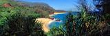 High Angle View of a Beach, Lumahai Beach, Kauai, Hawaii, USA Photographic Print by  Panoramic Images