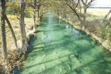 Guadalupe River, Texas Photographic Print