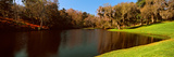 Pond in a Garden, Middleton Place, Charleston, South Carolina, USA Photographic Print by  Panoramic Images