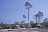Men and Equipment Clearing Land for Development in North Carolina Photographic Print