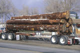 A Logging Truck Driving Down a Highway Photographic Print