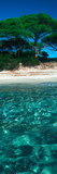 Palombaggia Beach from the Water, Corsica, France Fotografisk trykk av Panoramic Images,
