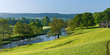 Trees on a Hill, Chatsworth House, Peak District, Derbyshire, England Photographic Print by  Panoramic Images