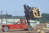 An Industrial Forklift Moving a Large Bundle of Logs at a Container Paper Mill Photographic Print