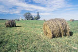 Baled Hay in Field, Centerville, Eastern Shore, MD Photographic Print