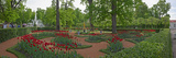 Garden of the Catherine Palace, Tsarskoye Selo, St. Petersburg, Russia Photographic Print by  Panoramic Images