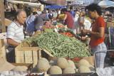 Farmers Market in Boston, MA Photographic Print