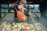 Crab Vendor in Oregon Photographic Print