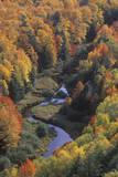 Autumn Leaves, Porcupine State Park, Michigan Papier Photo