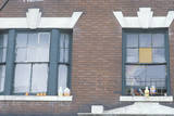 Windows of Residential Project Building, South Bronx, New York Photographic Print