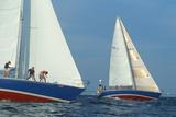 Naval Academy Midshipmen Sailing, Annapolis, Maryland Photographic Print