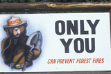 "A Sign That Reads ""Only You Can Prevent Forest Fires"" Photographic Print"