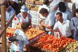 Shoppers Buying Produce at an Open Air Market Photographic Print