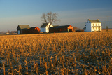 Farm House and Fields in Winter, Delaware Photographic Print